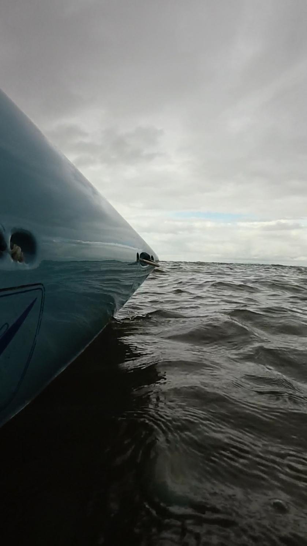 Baleias07